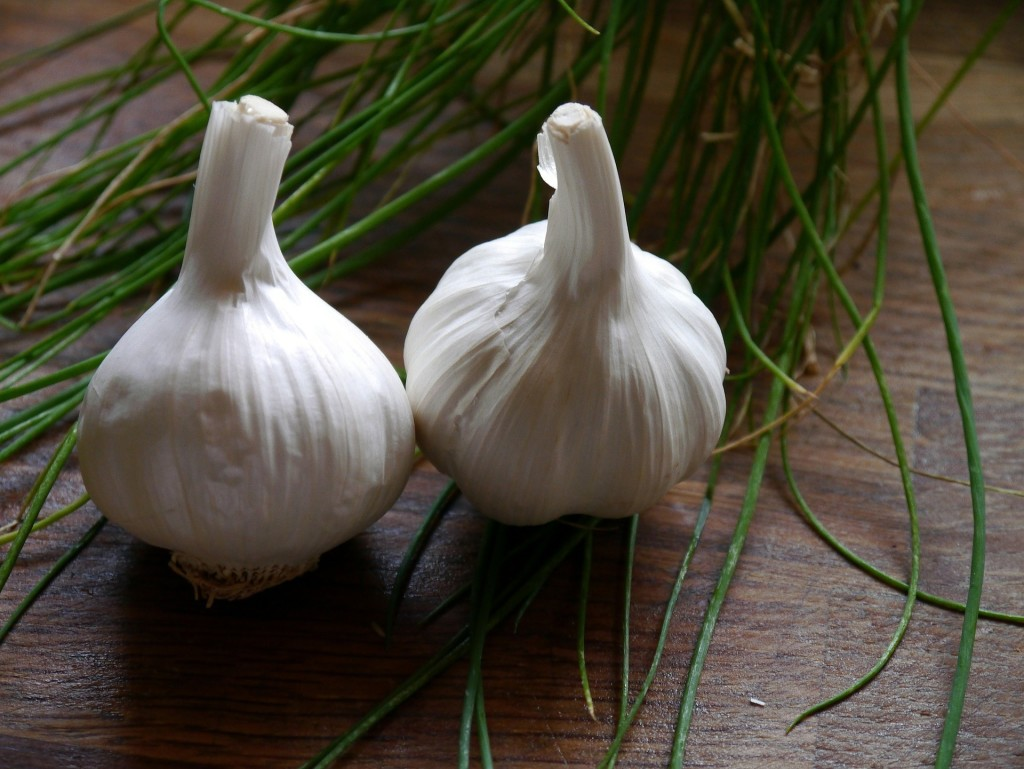 garlic-498634_1920