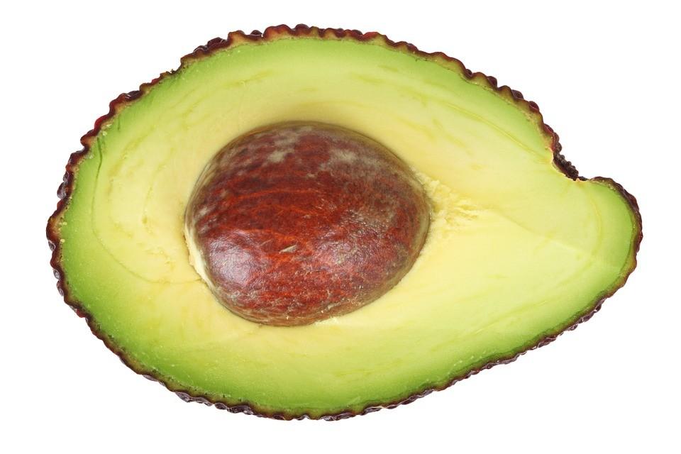 avocado-16041_960_720