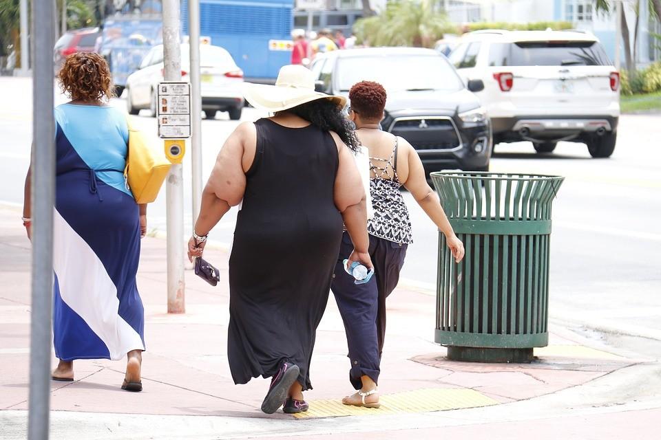 obesity-993126_960_720