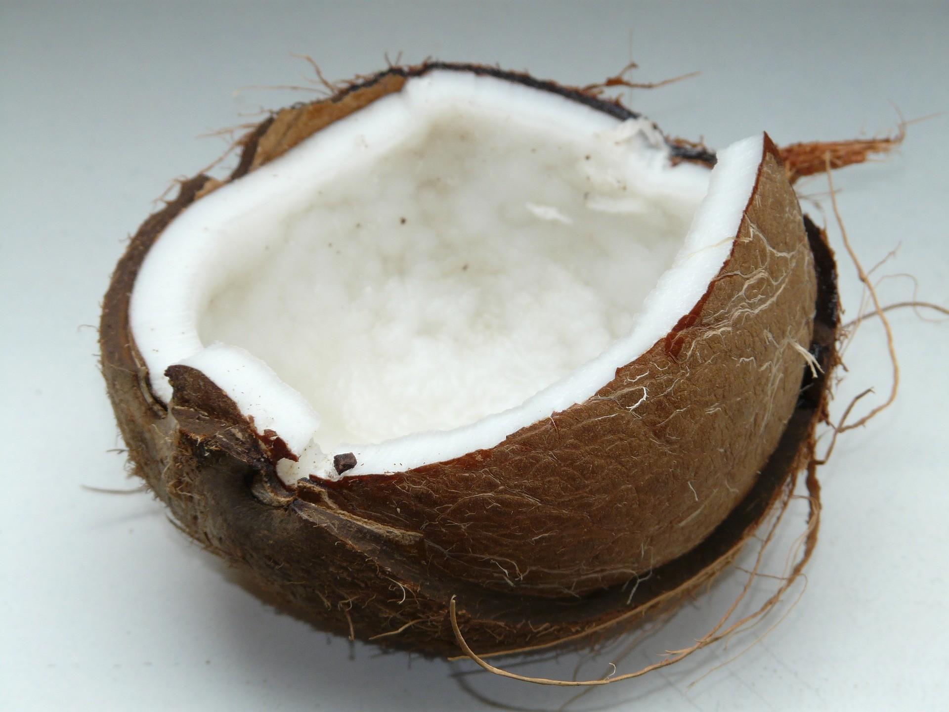 coconut-60395_1920