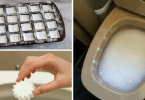 you-will-never-have-to-scrub-a-toilet-again-if-you-make-these-diy-toilet-cleaning-bombs1