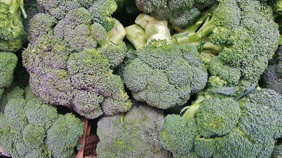 broccoli-1429150_960_720-1