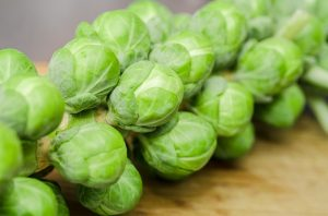 sprouts-1091633_960_720